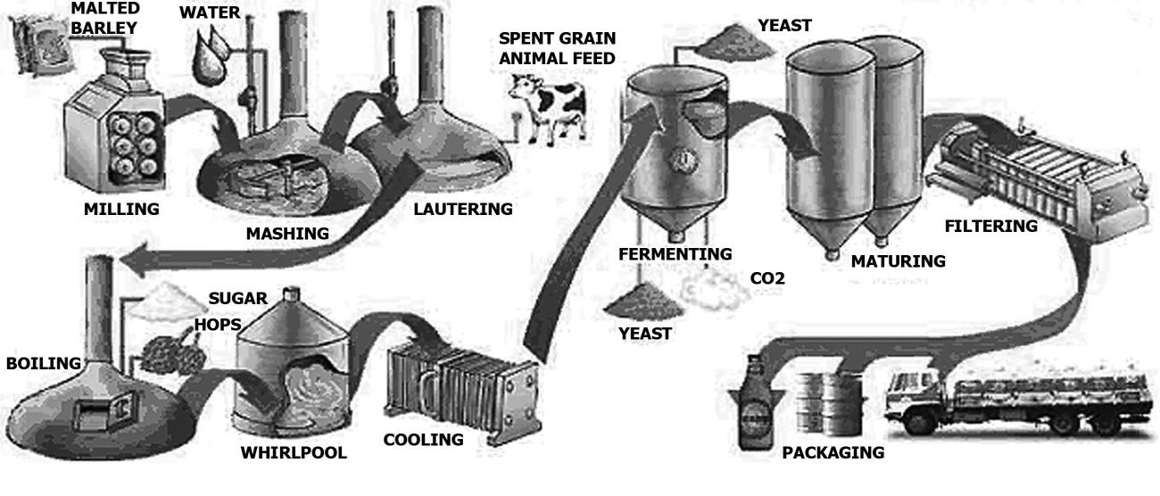 Ielts academic task 1 beer manufacturing processes eltec english beer manufacturing ielts pte ccuart Images