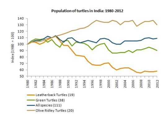 Turtles population Line graph IELTS