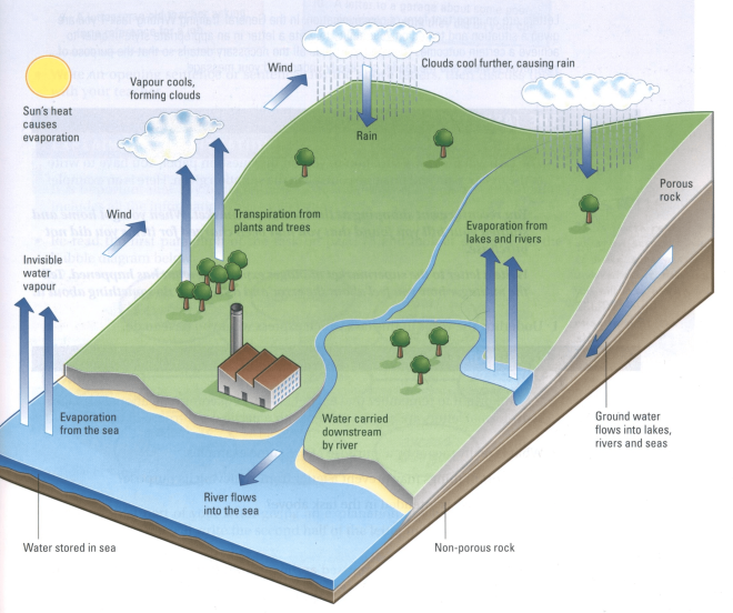 Ielts how to write a diagram water cycle eltec english water cycle ielts pte ccuart Choice Image