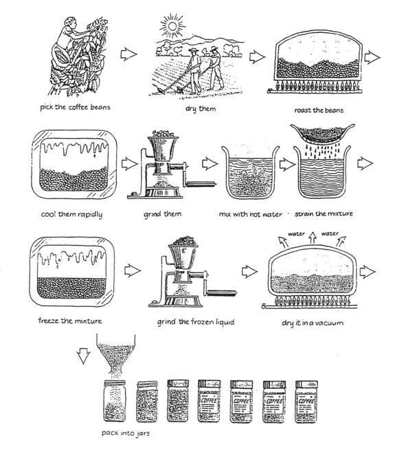 coffee process IELTS