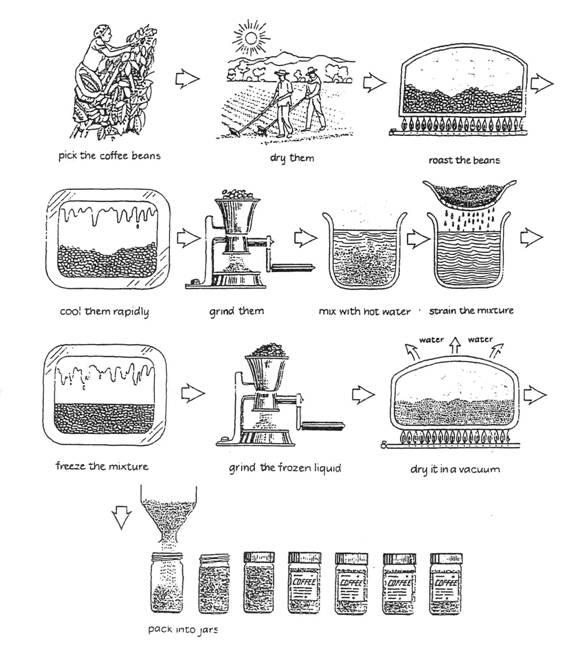 coffee process IELTS.jpg
